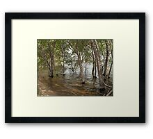 Wadding in the Water- Willow Lake Framed Print