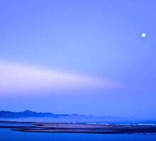 Plett water and land at night by davridan