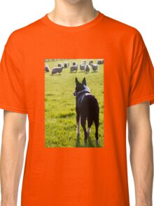 Working Collie Classic T-Shirt