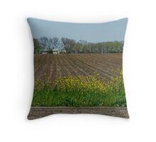 Farmland in Texas Throw Pillow