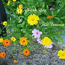 Thank You....Just Because by MaeBelle
