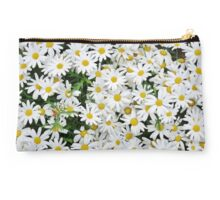 Spring Daisies Studio Pouch