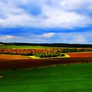 This Green And Pleasant Land by riotphoto