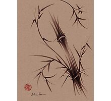 """As One""  Original brush pen sumi-e bamboo drawing/painting Photographic Print"