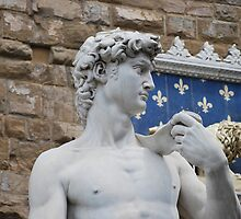 Statue of David in Florence, Italy by Laura Sanders