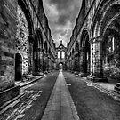 Kirkstall Abbey #01 by shutterjunkie