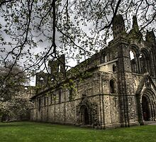 Kirkstall Abbey #02 by shutterjunkie