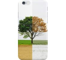 Four Seasons iPhone Case/Skin