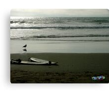 Two Surfboards Canvas Print