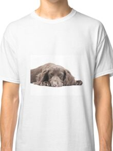Let Sleeping Dogs Lie Classic T-Shirt