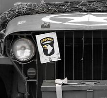 101st Airborne  (Screaming Eagles) by larry flewers