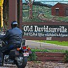Old Davidsonville State Park by Susan Blevins