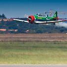 Flying Lion – ZU-BEU - Harvard Aerobatic Team by RatManDude