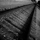 Tracks by Alexandra Lenz