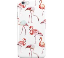 Flamingos Pattern iPhone Case/Skin