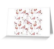 Flamingos Pattern Greeting Card