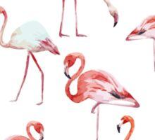 Flamingos Pattern Sticker