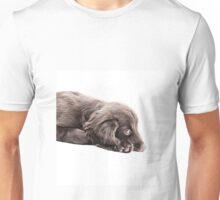 Sulky Spaniel Unisex T-Shirt