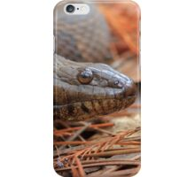 Water Snake iPhone Case/Skin