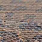 Scales of a Water Snake by WorldDesign