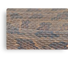 Scales of a Water Snake Canvas Print