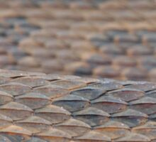 Scales of a Water Snake Sticker