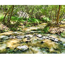 Calf Creek  Photographic Print