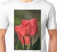 Tulips 3 - Dow's Lake, Ottawa, ON Unisex T-Shirt