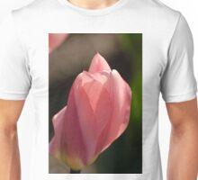 Tulip - Dow's Lake, Ottawa, ON Unisex T-Shirt