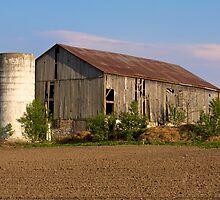 Rural Ontario Scenery by RandiScott