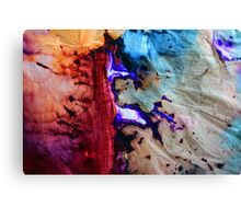 Inspired by Nature Canvas Print