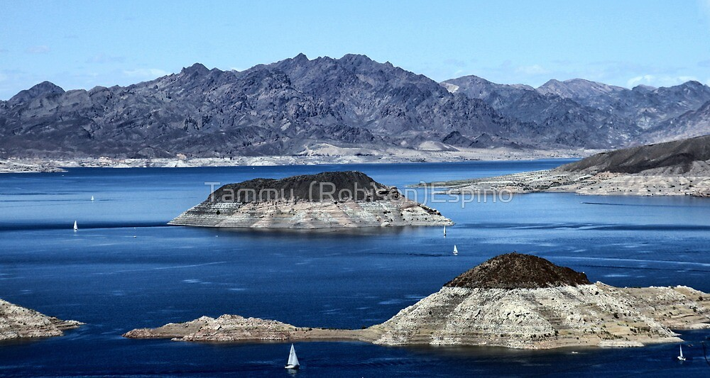Lake Mead Sailing by Tammy  (Robison)Espino