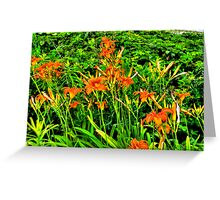Tigers In Our Field Greeting Card