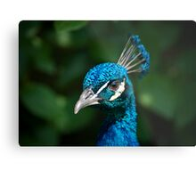 King With A Crown Metal Print