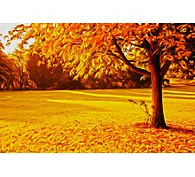 Yellow Autumn Photographic Print