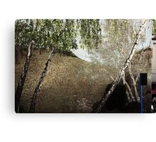 the brick wall for the trees Canvas Print