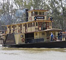 Emmy Lou Paddle Steamer Echuca by Pauline Tims