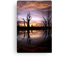 Early light. Canvas Print