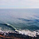 west coast by Santamariaa