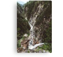 Switzerland river Canvas Print