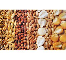 CEREALS..., SINCE ANCIENT TIMES... Photographic Print