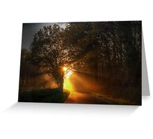 Shafts of Sunlight Greeting Card