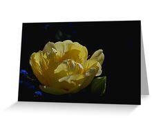 Triple tulip Greeting Card