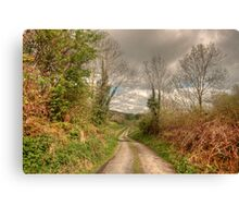 Rural Clare road Canvas Print
