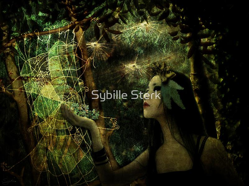 Story Weaver by Sybille Sterk