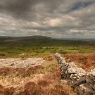 Burren View by John Quinn