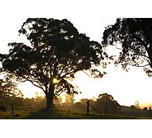 rural sillhouettes at sunset Photographic Print