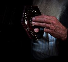 The hand that rocks the concertina by Ant Vaughan