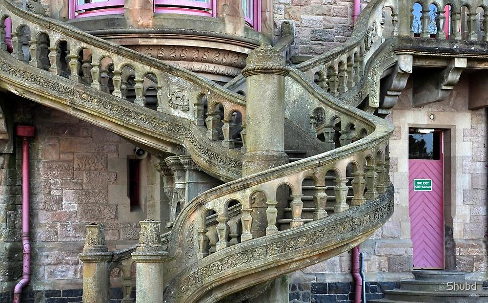 Belfast Castle _ Outside Stairway by Shubd
