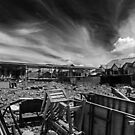 After A Deadly Fire by Charuhas  Images
